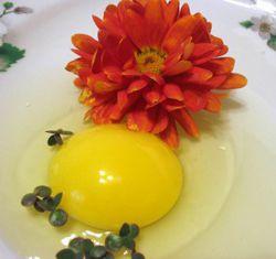 Маски для волос с яйцом