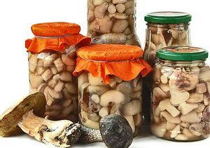 грибы волнушки