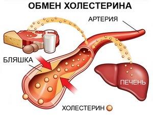 Как снизить холестерин нормы холестерина